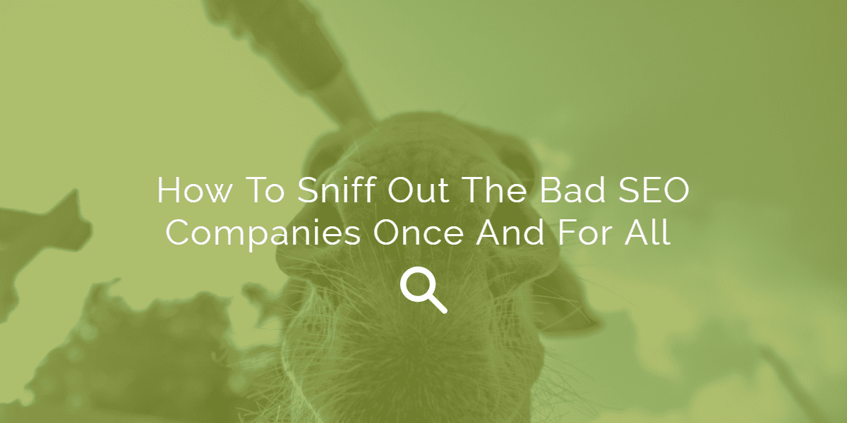 How To Sniff Out The Bad SEO Companies Once And For All | House of Search